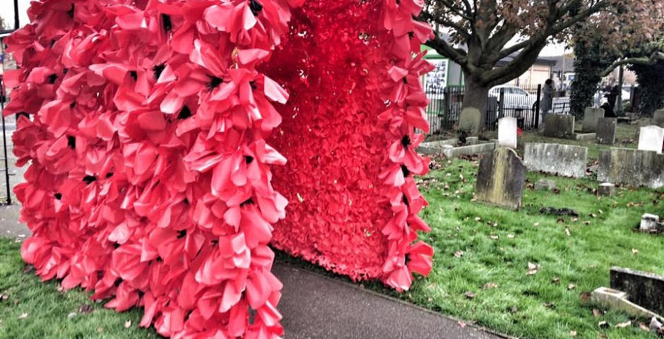 Poppy Tunnel for Remembrance Weekend
